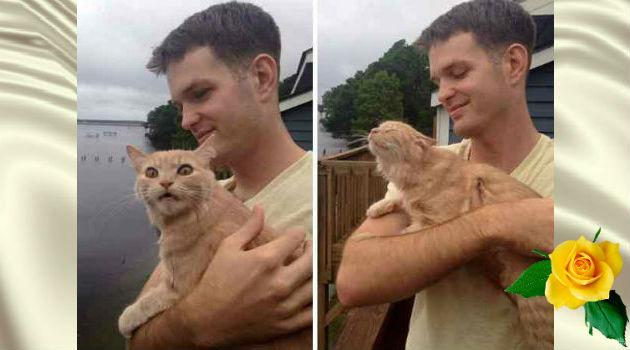 реакции животных