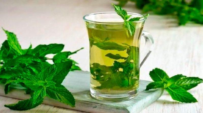 6 преимуществ мятного чая и правильный способ его приготовления