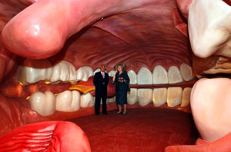 Вот это да!!! Музей человеческого тела, коты путешественники и цирк стоматологов