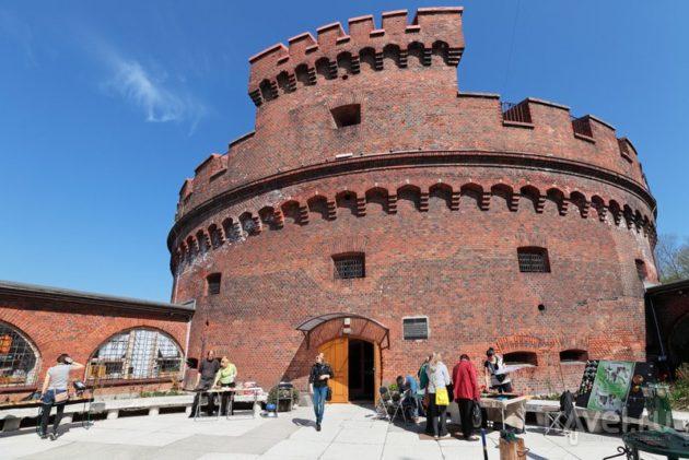 Великолепные замки Калининграда