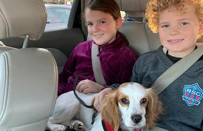 Открыв мусорный бак, женщина встретилась глазами с испуганной собакой и ее крохотным щенком.