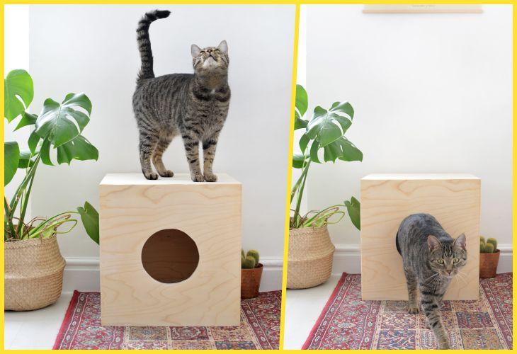 Домики для кошек: удачные идеи, обеспечивающие питомцам максимум комфорта