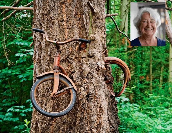 В 1914 году молодой человек ушел в армию и спрятал велосипед в лесу.